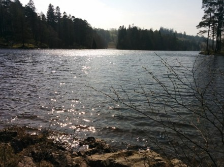 tarnhows-lakeclose